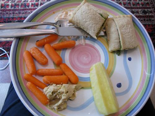 lunch plate 821